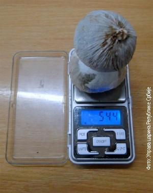 """U """"nuteli"""" se našlo nešto više od 50 grama marihuane"""