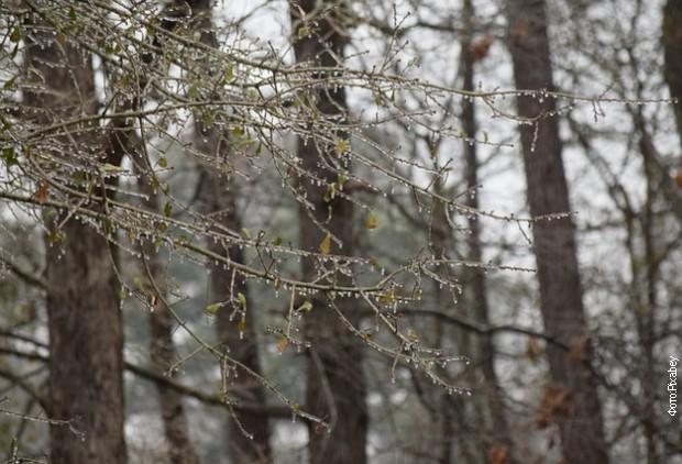 Pred kraj kalendarske zime kiša, sneg i jak severac