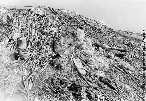 Leševi zatočenika na obali Save u Jasenovcu