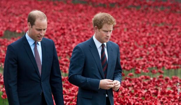 Prinčevi Vilijam i Hari