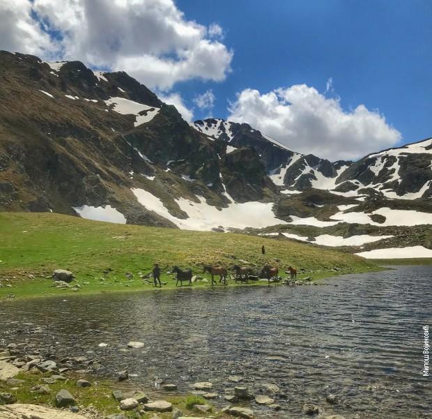 Pastir s konjima kod Crnog jezera na Šari, ispod vrha Rudoke