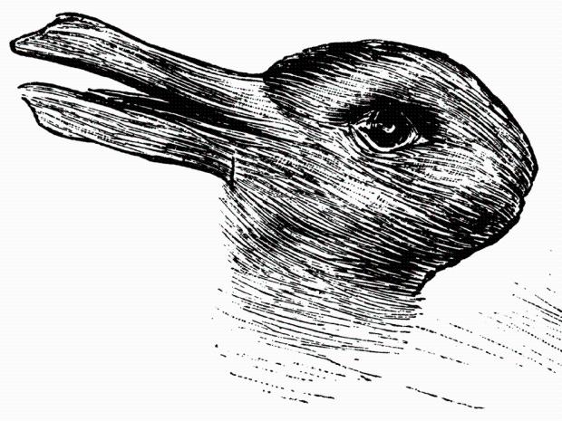 Патка или зец, цртеж из 1892.